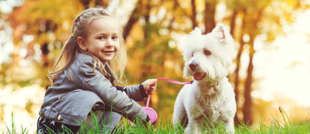How to Keep Yourself and Others Safe Around Dogs